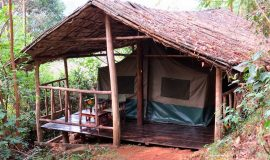 Lake Kitandara Bwindi Tented Camp