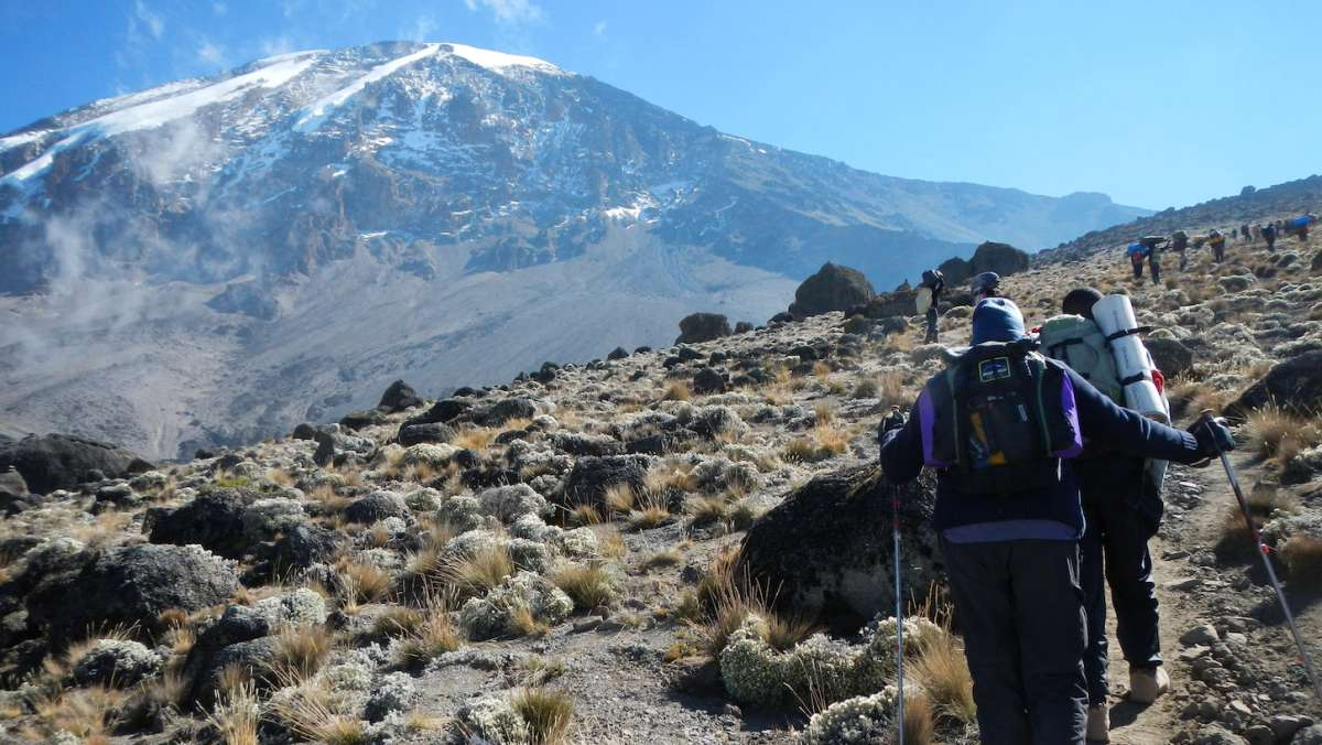 Mount Kenya and Kilimanjaro climb